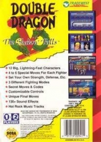 Double Dragon V: The Shadow Falls Box Art