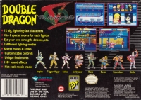 Double Dragon V: The Shadow Falls Box Art