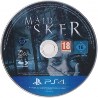 Maid of Sker Box Art