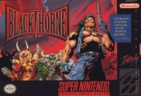 Blackthorne Box Art