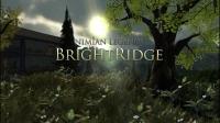 Nimian Legends - Brightridge (Android) Box Art