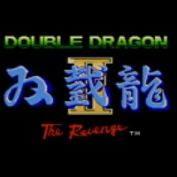 Double Dragon II: The Revenge Box Art