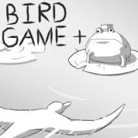 Bird Game + Box Art