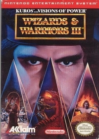 Wizards & Warriors III Box Art