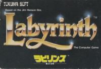 Labyrinth: Maou no Meikyuu Box Art