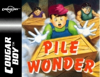 Pile Wonder Box Art
