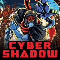 Cyber Shadow Box Art