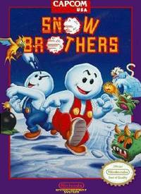 Snow Brothers Box Art