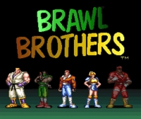 Brawl Brothers Box Art