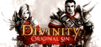 Divinity: Original Sin Box Art